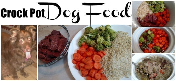 Homemade High Calorie Dog Food
